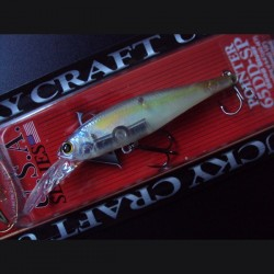 B'Freeze/Pointer 65 DD SP col.170 Ghost Chartreuse Shad