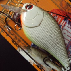 Lucky Craft LC 2.5 DRS #217 Moss Back Shad