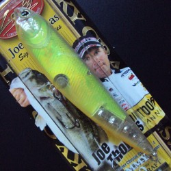 Sammy 100 col.169 JOE'S Magic Shad