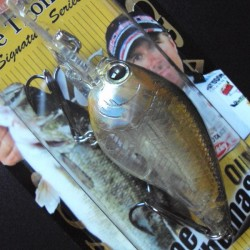 Lucky Craft Flat Mini DR #167 Aurora Ghost Shad