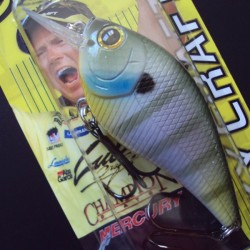 S.K.T. MR col.317 Natural Bream