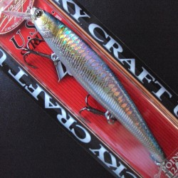 Slender Pointer 112 MR col.270 MS American Shad