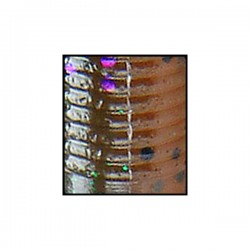 4'' Senko Laminate (9S-10-926) Drk Grn Pmpk w/pur, blk, sm emerald/ Tramsp. Amber Laminate