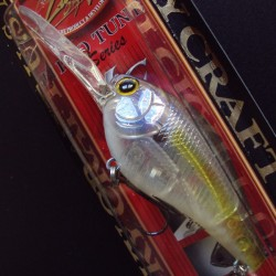 Flat CD DR col.170 Ghost Chartreuse Shad