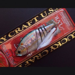Live LVR col.108 Bloody MS American Shad