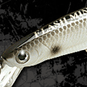 Lucky Craft Flash Minnow 95 MR