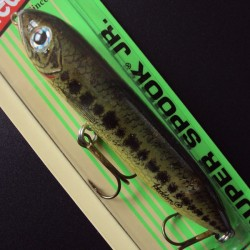 Heddon Super Spook Jr. #348 Florida Bass