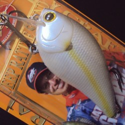 Lucky Craft LC 2.5 DRS #250 Chartreuse Shad