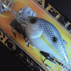 Lucky Craft Flat Mini DR #172 Sexy Chartreuse Shad